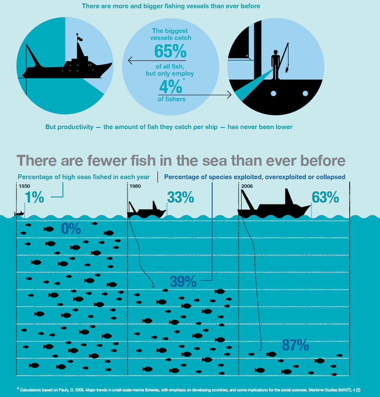 What is overfishing panic in the north atlantic for What is commercial fishing